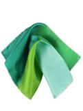 4xGrün-Einstecktuch