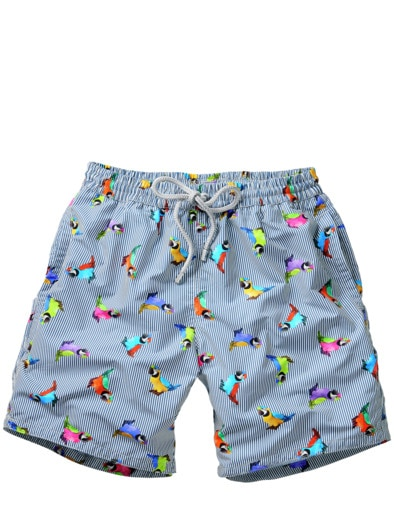 Pappagallo-Shorts