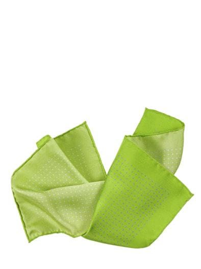 Chlorophyll-Einstecktuch
